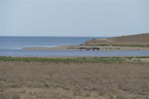 Aydar Kul Lake in Uzbekistan