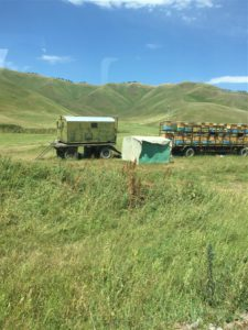 Honey maker in the Kyrgyz steppe