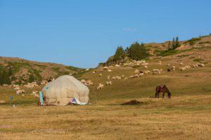 Yurt in Kazakhstan