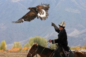 Berkutchi Eagle hunter in Kyrgyzstan