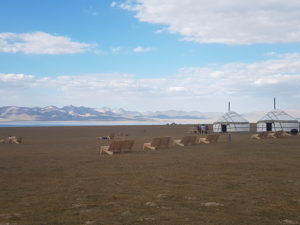 Son Kul yurt camp, Kyrgyzstan